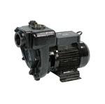 Piusi E300 насос для перекачки дизельного топлива